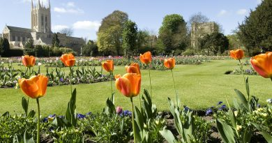 New area opens for Abbey Gardens visitors